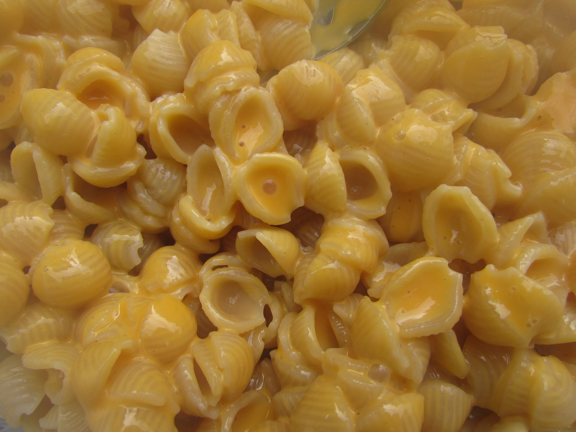 Phthalates in Mac and Cheese: Sensationalism Defeats Science